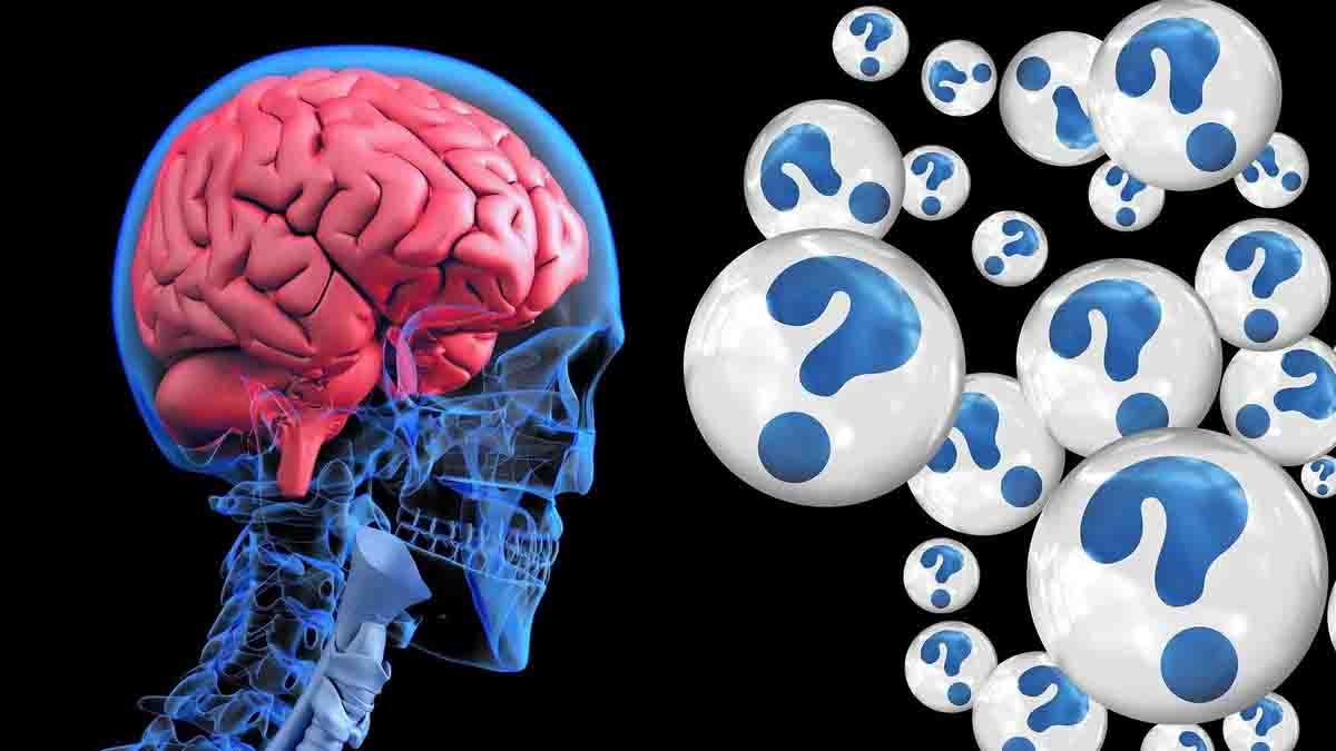 22 Truths Regarding the Brain|Globe Mind Day